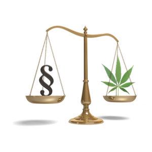 Hackensack Juvenile Marijuana Defense Lawyer Needed